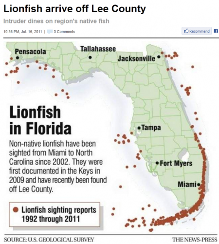 Lionfish State Graph
