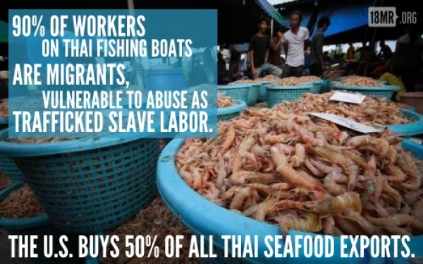 Farmed Shrimp Built on the Back of Slave Labor  Market - Practices in Farmed Seafood Underscores Luster of Gulf Seafood