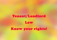 Landlord/Tenant Law in Florida:   Know Your Rights and Responsibilities
