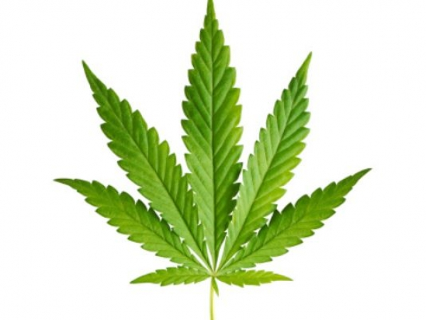BUT WAIT !!! Marijuana is and has been the most commonly used illegal substance in the U.S.