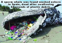 Environment: Turning the Plastic Tide