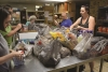 A Season of Giving: Charity Groups Provide Thanksgiving for Families in Need