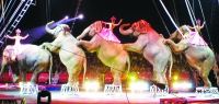 Goodbye to Circuses. Are Zoos Next?