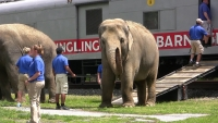 This site will never be seen again as Ringling Bros. and Barnum and Bailey circus retires its elephants from the Big Top to retirement in Florida