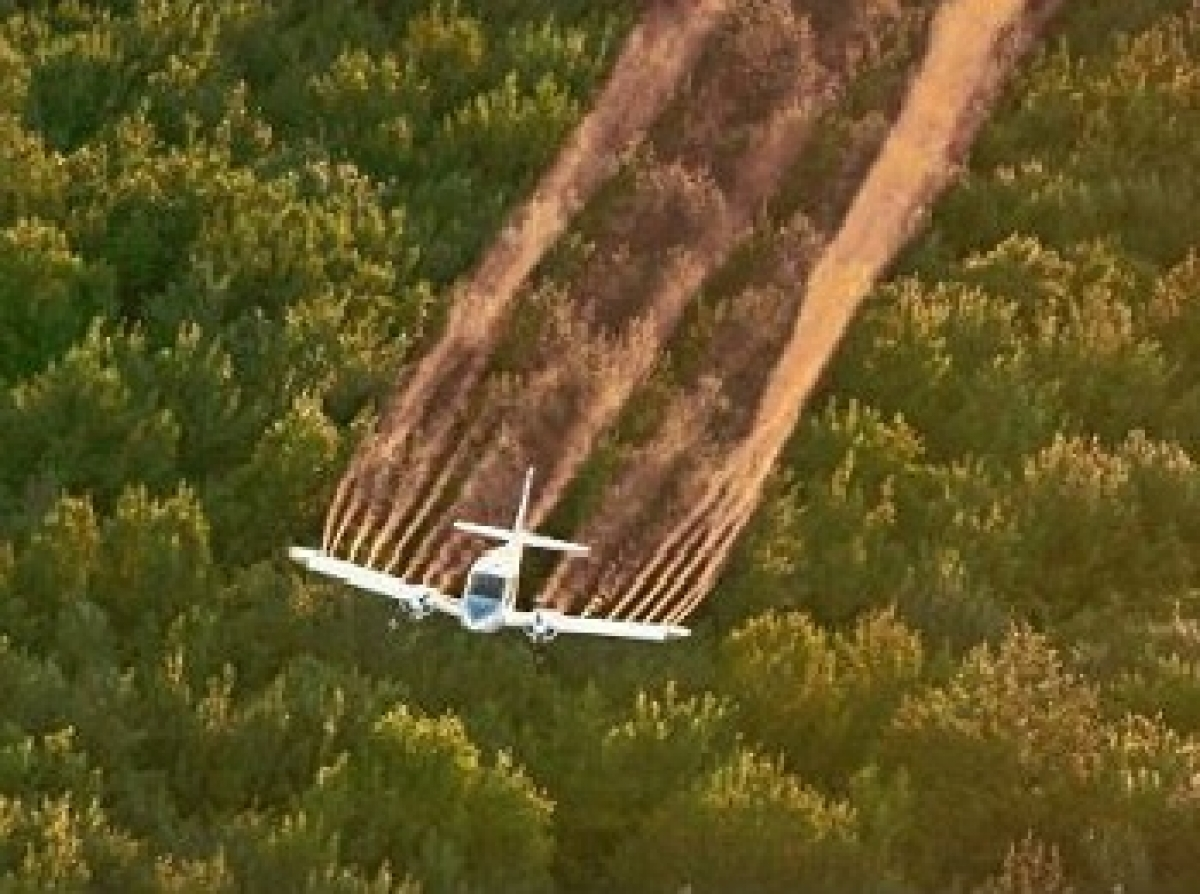 Aerial Mosquito Pesticide Spraying Linked to Higher Autism Risk