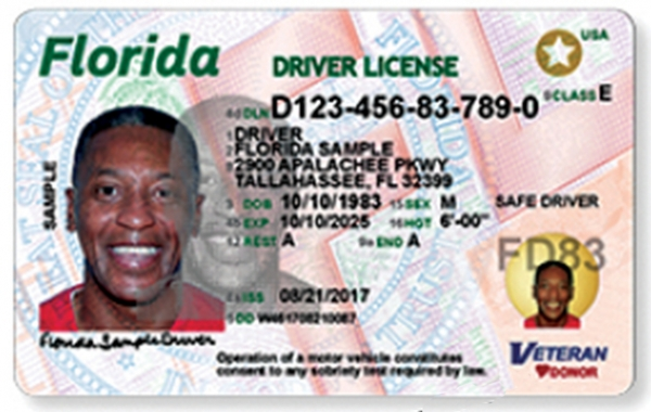 The Changes to the new Florida Drivers License are too many to point them all out here, their website: www.flhsmv.gov/newD explains the new changes in detail with many example photos to illustrate the changes.