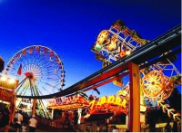 The Collier County Fair,  In it's 41st Year! Now Bigger and Better!