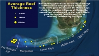 "US Coral Reefs ""Fair: But  Vulnerable To Dire Degradation"